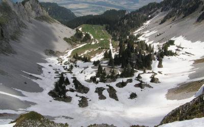 5.1 Eboulis froids (et autres formations poreuses) de basse altitude
