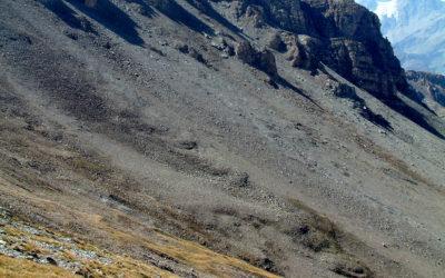 4.8 Répartition du pergélisol dans les éboulis de haute altitude